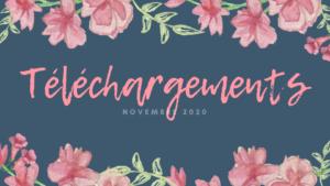 Téléchargements Novembre 2020